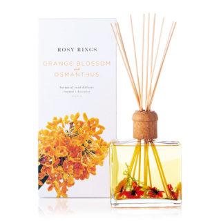 fragrance013