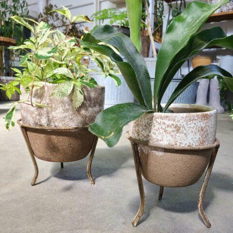 planter017
